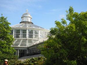 """Drivhuset i """"Botanisk Have""""."""