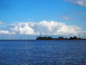 Danske vindturbinar sett frå ein båttur i havna.